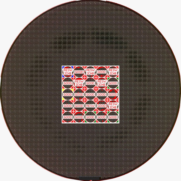 Image taken by EAGLEview of a semiconductor wafer with a 2-chamber macro defect.