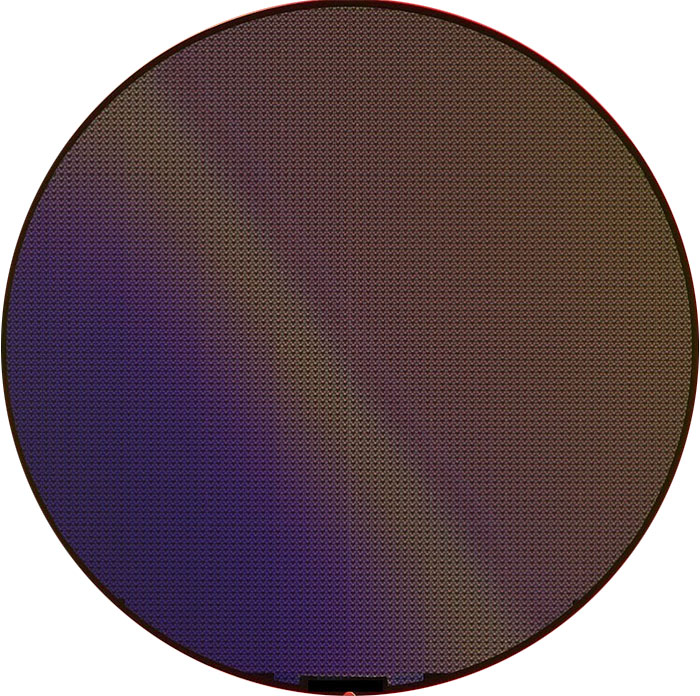 Develop - Semiconductor Wafer Macro Defect Image - 2