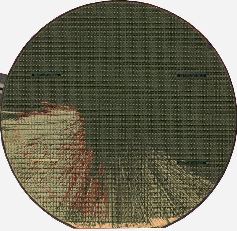 Develop - Semiconductor Wafer Macro Defect Image - 1