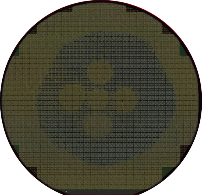 Develop - Semiconductor Wafer Macro Defect Image - 3